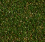 NATURAL GRASS 33 mm